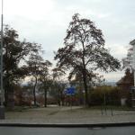 pred_PSP_dolni_II