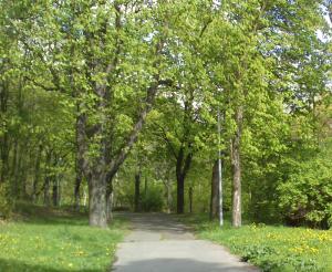 klíčovský lesopark