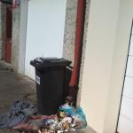 rozházené odpadky z popelnic Pod Krocínkou