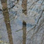 vodarybnik-15tunkatune02_galerie-980